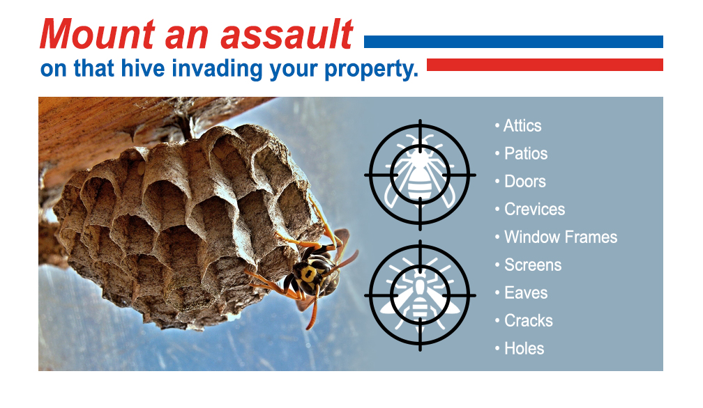 Mount an assualt on that hive invading your property.